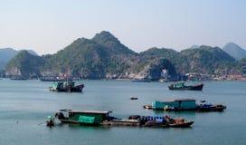 De huisboten in Ha snakken Baai dichtbij Cat Ba-eiland, Vietnam Stock Afbeeldingen