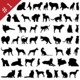 De huisdieren silhouetteert # 1 Stock Foto's