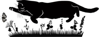 De huisdierenkat vangt vlinders Stock Foto's
