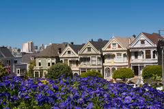 De huizen in San Francisco Royalty-vrije Stock Foto's