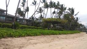 De huizen van Beachfront royalty-vrije stock afbeelding