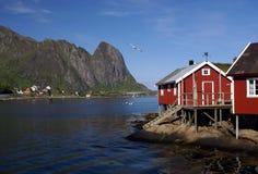 De huizen van de visser op Lofoten stock foto