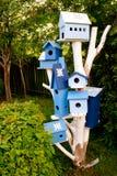 De huizen van de vogel Stock Foto's