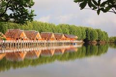 De huizen van de waterkant Stock Foto's