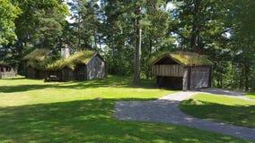 De huizen van Vikingen in Zweden stock fotografie