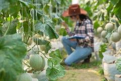 De Hulp, Landbouwambtenaar van de vrouwenwetenschap stock afbeelding