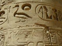 De hulp van de eend in Karnak Tempel, Egypte Royalty-vrije Stock Foto