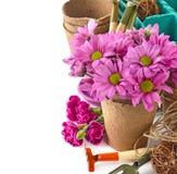 De hulpmiddelen en de bloemen van de tuin Royalty-vrije Stock Foto's