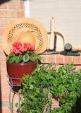 De hulpmiddelen en de bloemen van de tuin royalty-vrije stock foto