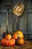 De hulpmiddelen van de tuin in loods met pompoenen Royalty-vrije Stock Afbeeldingen