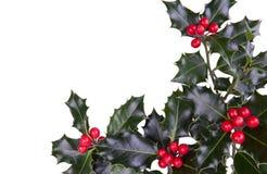 De hulst van Kerstmis Stock Afbeelding