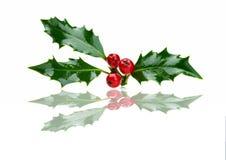 De hulst van Kerstmis en rode bessen met bezinning Stock Afbeelding