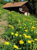 De hut van de berg royalty-vrije stock fotografie