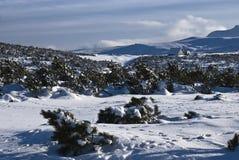 De hut van de berg Stock Foto's