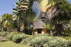 De hut van Kenia Masai Stock Afbeeldingen