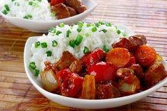De hutspot van het varkensvlees met rijst Royalty-vrije Stock Afbeeldingen