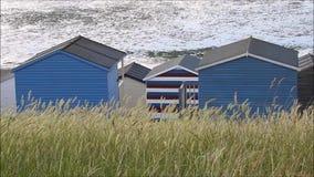 De hutten die van het kuststrand gras slingeren stock video