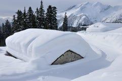 De hutten van alpen door sneeuw worden behandeld die