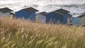 De hutten van het kuststrand stock video