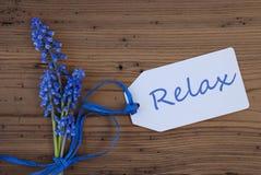 De Hyacint van de Srpingsdruif, Etiket, ontspant Stock Fotografie