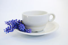 De hyacinten van de druif die de koffiekop verfraaien Stock Fotografie
