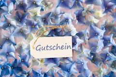 De hydrangea hortensiavlakte legt, Gutschein-Middelenbon, Bloesemtextuur stock afbeelding