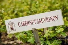 De Identificatieteken van de wijngaarddruif Stock Afbeelding