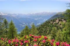 De idylle van alpen in Zuid-Tirol Royalty-vrije Stock Afbeeldingen