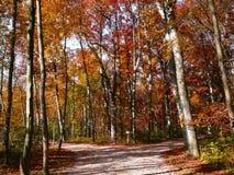 De idylle van de herfst stock afbeelding