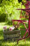 De idylle van de tuin Stock Foto's