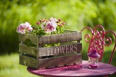 De idylle van de tuin Stock Foto