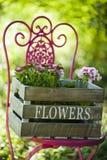 De idylle van de tuin Royalty-vrije Stock Afbeelding