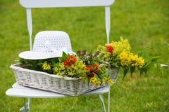 De idylle van de tuin Stock Fotografie