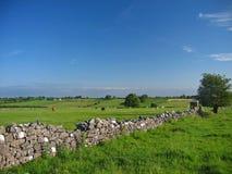 De Ierse platteland-zomer Royalty-vrije Stock Afbeeldingen