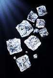 De ijsblokjes van de vlieg stock foto's
