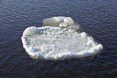 De ijsijsschol drijft stroomafwaarts af Stock Afbeeldingen
