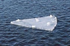 De ijsijsschol drijft stroomafwaarts af Stock Foto