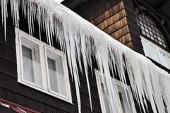 De ijskegels van de winter Stock Foto's