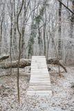 De ijzige dag van de sneeuwwinter in het bos Stock Foto
