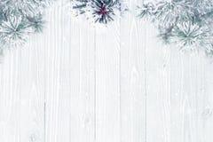 De ijzige pijnboomboom vertakt zich achtergrond Stock Afbeeldingen