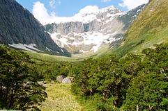 De ijzige vallei van Nieuw Zeeland Stock Foto's