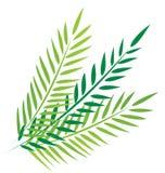 Palmen in goede vrijdag stock illustratie