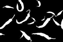De illustratie van cayennepeper de Spaanse peperpeulen zich op een zwarte achtergrond verspreidden, isoleert stock foto's