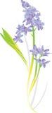 De Illustratie van de bloem Stock Afbeelding