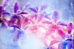 De illustratie van de bloemwaterverf Stock Afbeelding
