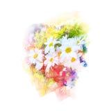 De illustratie van de bloemwaterverf Stock Afbeeldingen