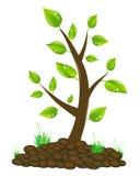 De illustratie van de boom Stock Foto's
