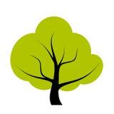 De illustratie van de boom Stock Afbeeldingen