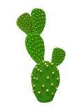 De illustratie van de cactusinstallatie Stock Fotografie