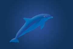 De illustratie van de dolfijn Royalty-vrije Stock Afbeelding